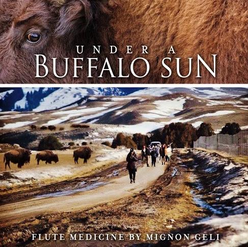 Buffalo Sun